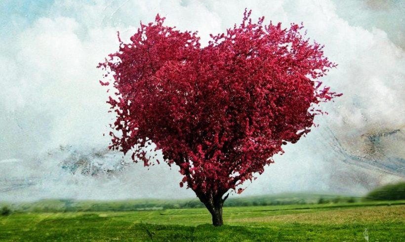 Карма на Любовта- Въпрос 1